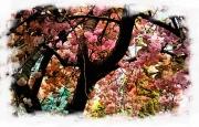 pastels-of-spring