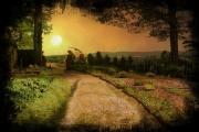 sunset-atthe-field