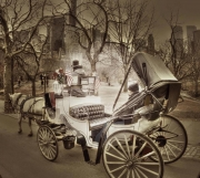 the-carriage-ride